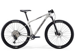 Merida Big.Nine 5000 29 2020