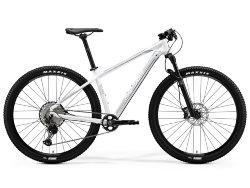 Merida Big.Nine XT-Edition 29 2020