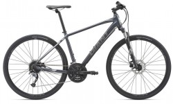 Giant Roam 2 Disc 28 2019